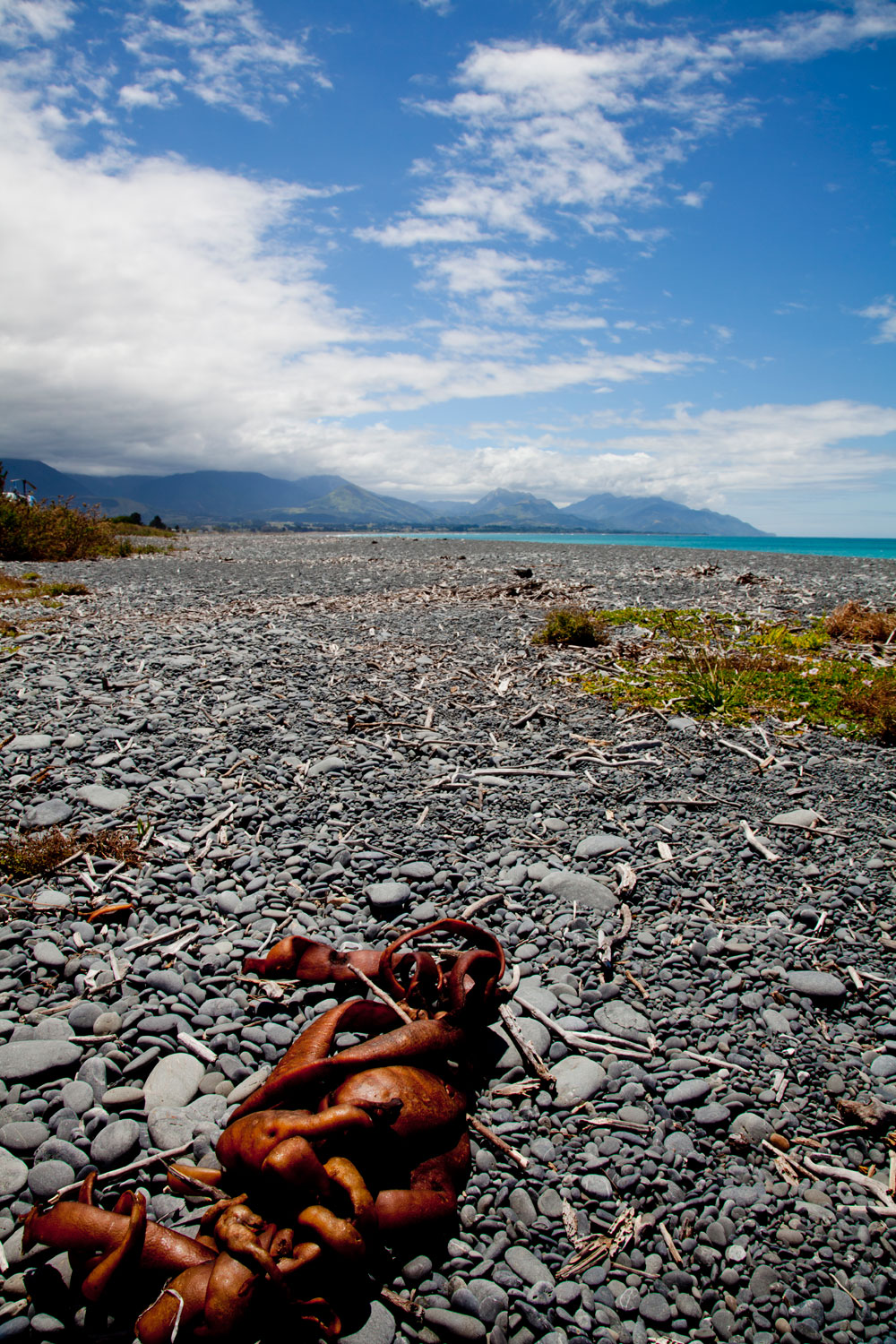 New Zealand Landscape Photography (10)