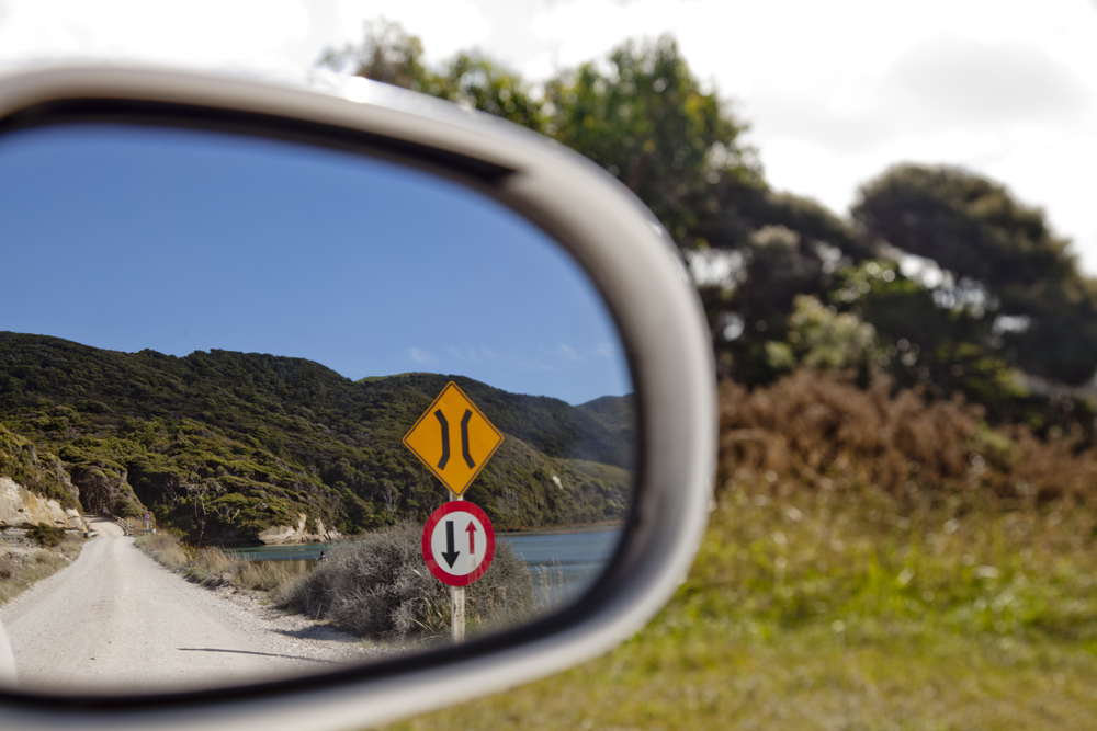 Side Mirror Landscape New Zealand (11)