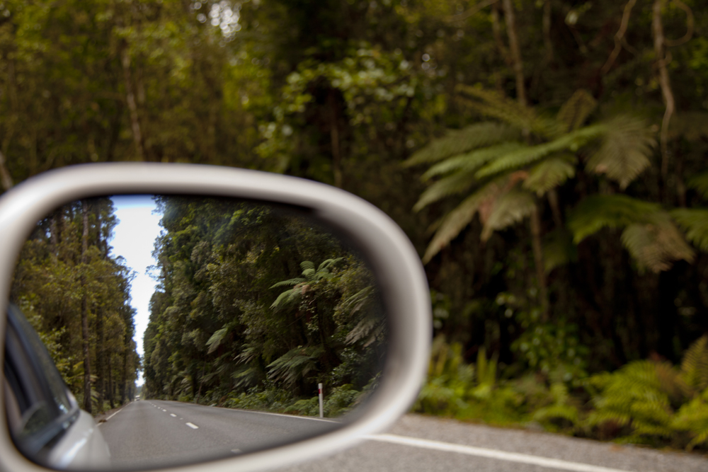 Side Mirror Landscape New Zealand (15)