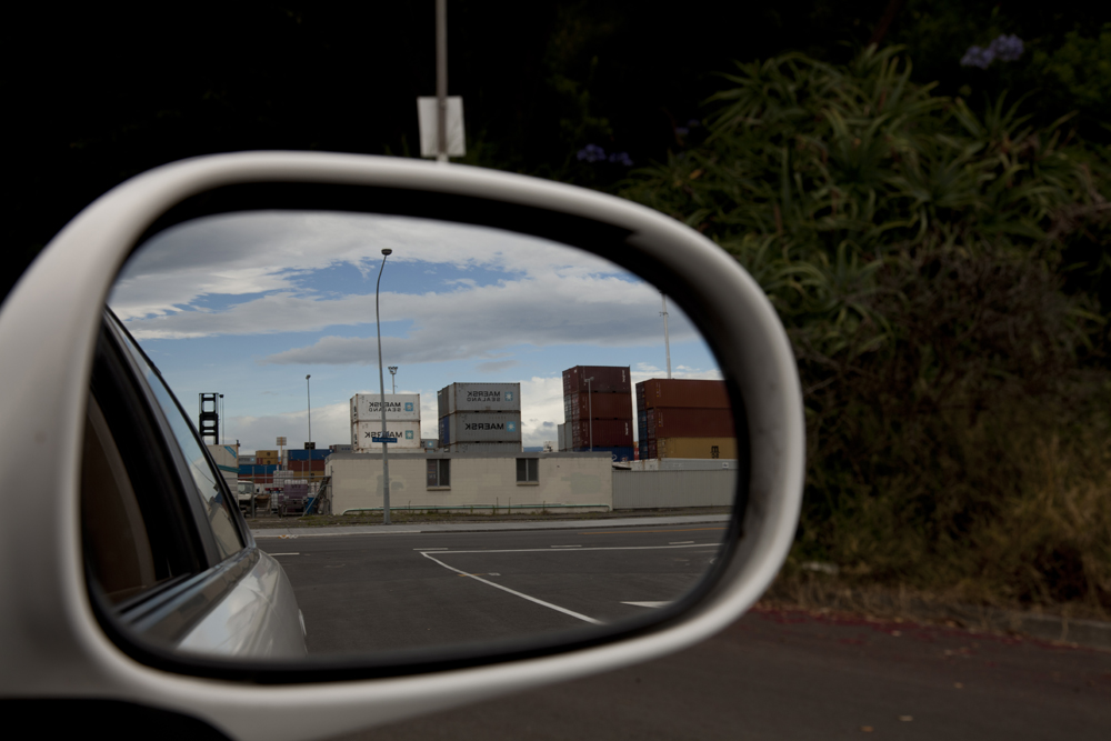 Side Mirror Landscape New Zealand (2)