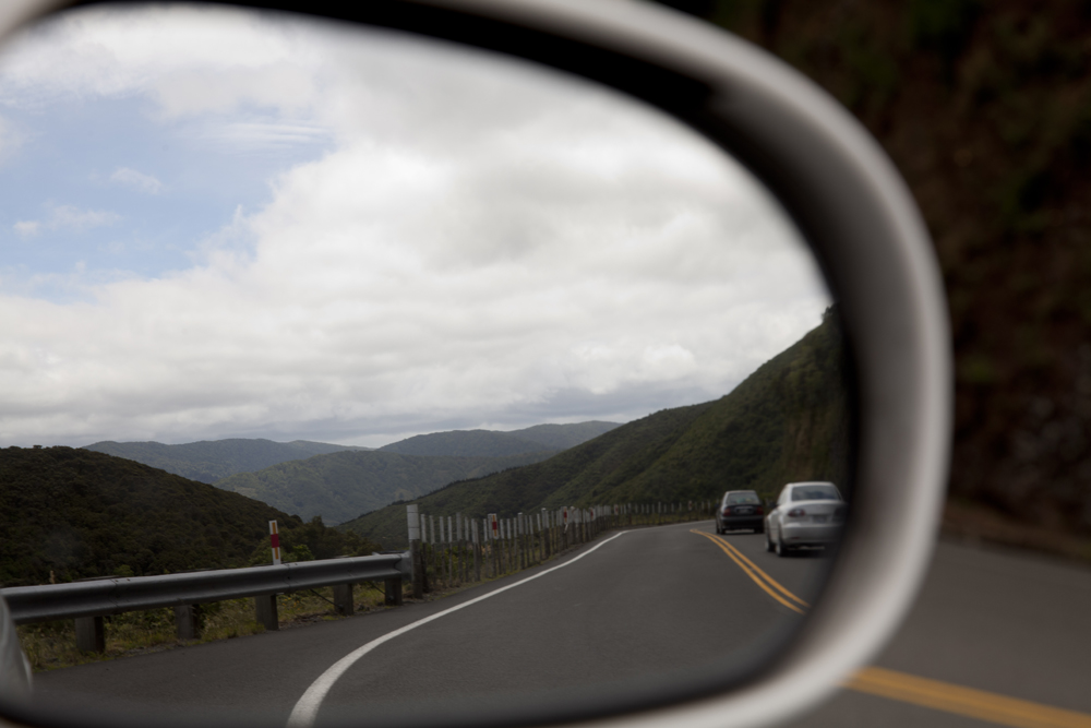 Side Mirror Landscape New Zealand (4)