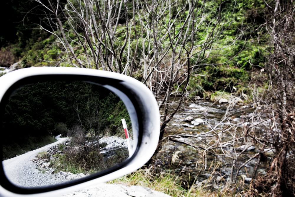Side Mirror Landscape New Zealand (8)