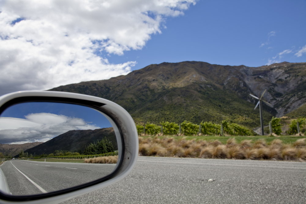 Side Mirror Landscape New Zealand (20)