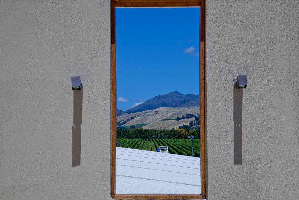 Marlborough Winery (8)